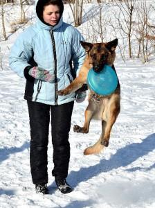 Семинар по фризби для собак с Екатериной Лемасовой в Пушкине (СПб).