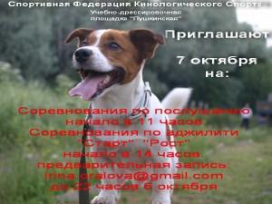 афиша соревнований по послушанию для собак на  дрессировочной площадке города Пушкина.
